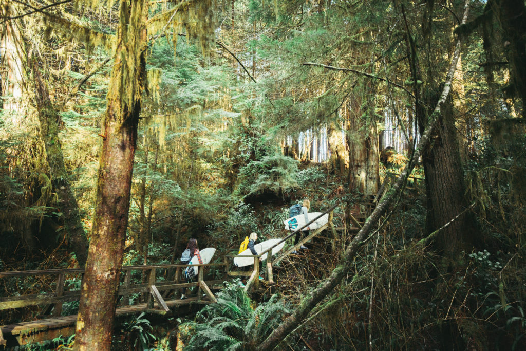Three women carry surfboards through a dense forest.