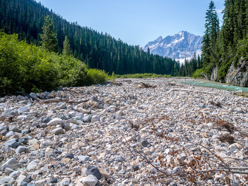 A rocky trail lined with trees leads to a snow-capped mountain range.
