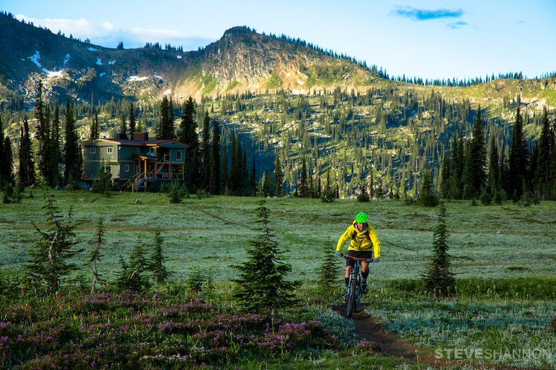 A woman cycles on a path through a lush meadow.