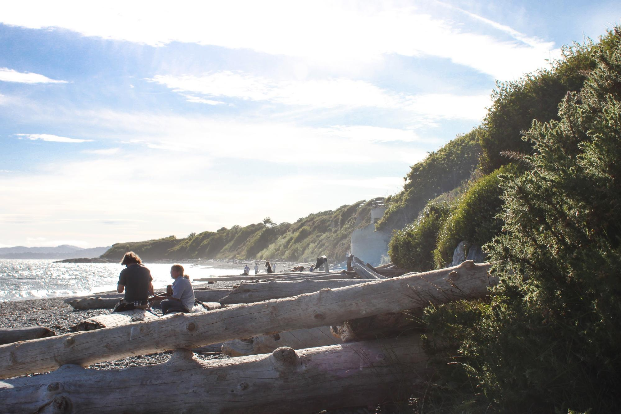 A man and a woman sit on a piece of driftwood overlooking the water.