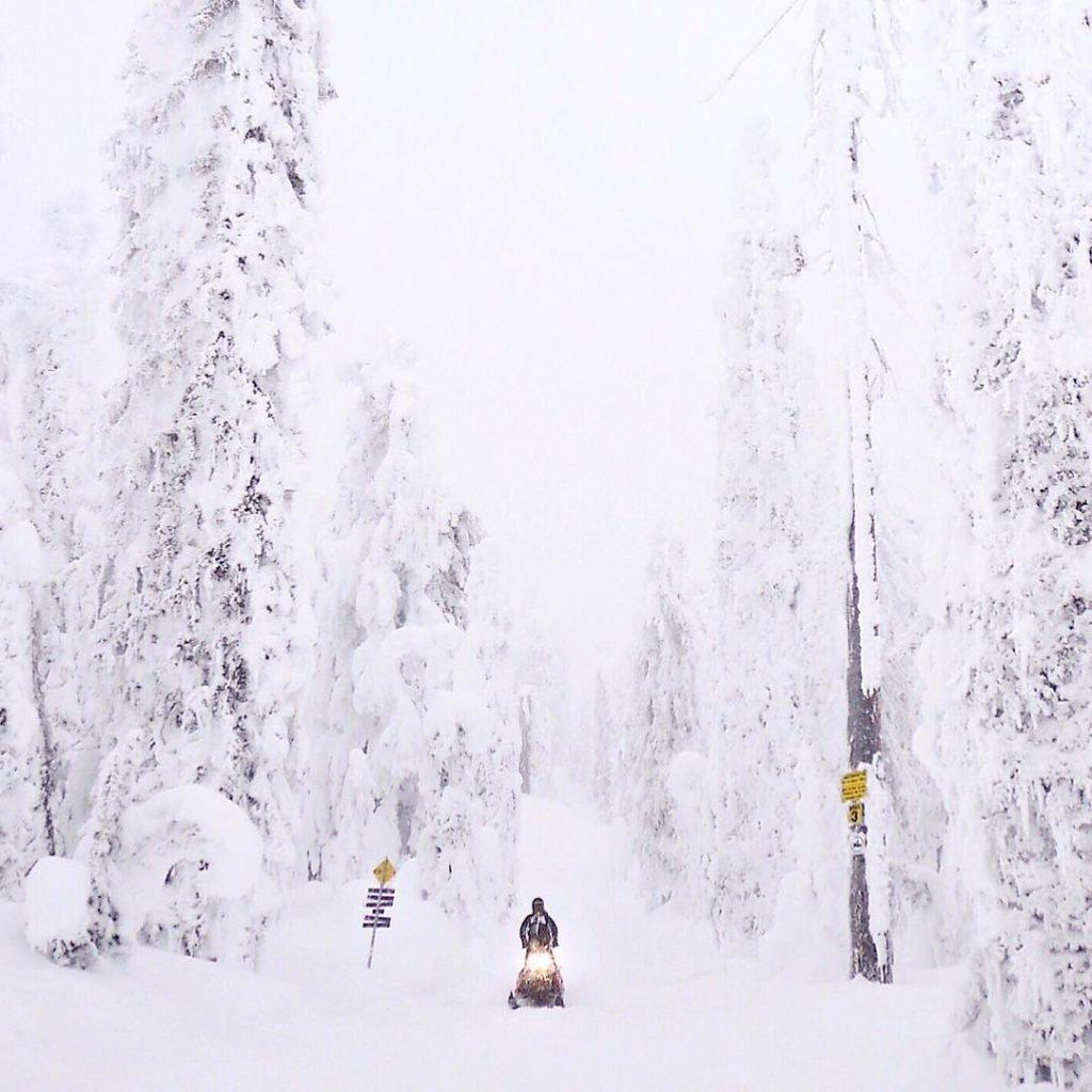 Snowmobiling in Revelstoke.