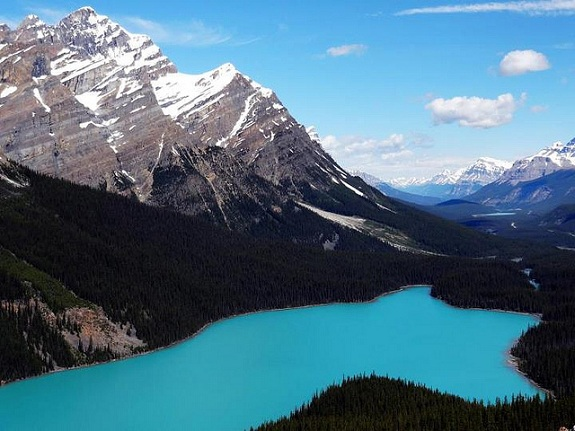 Turquoise Peyto Lake with Banff National Park's mountain peaks surrounding it and blue sky with white fluffy clouds above.