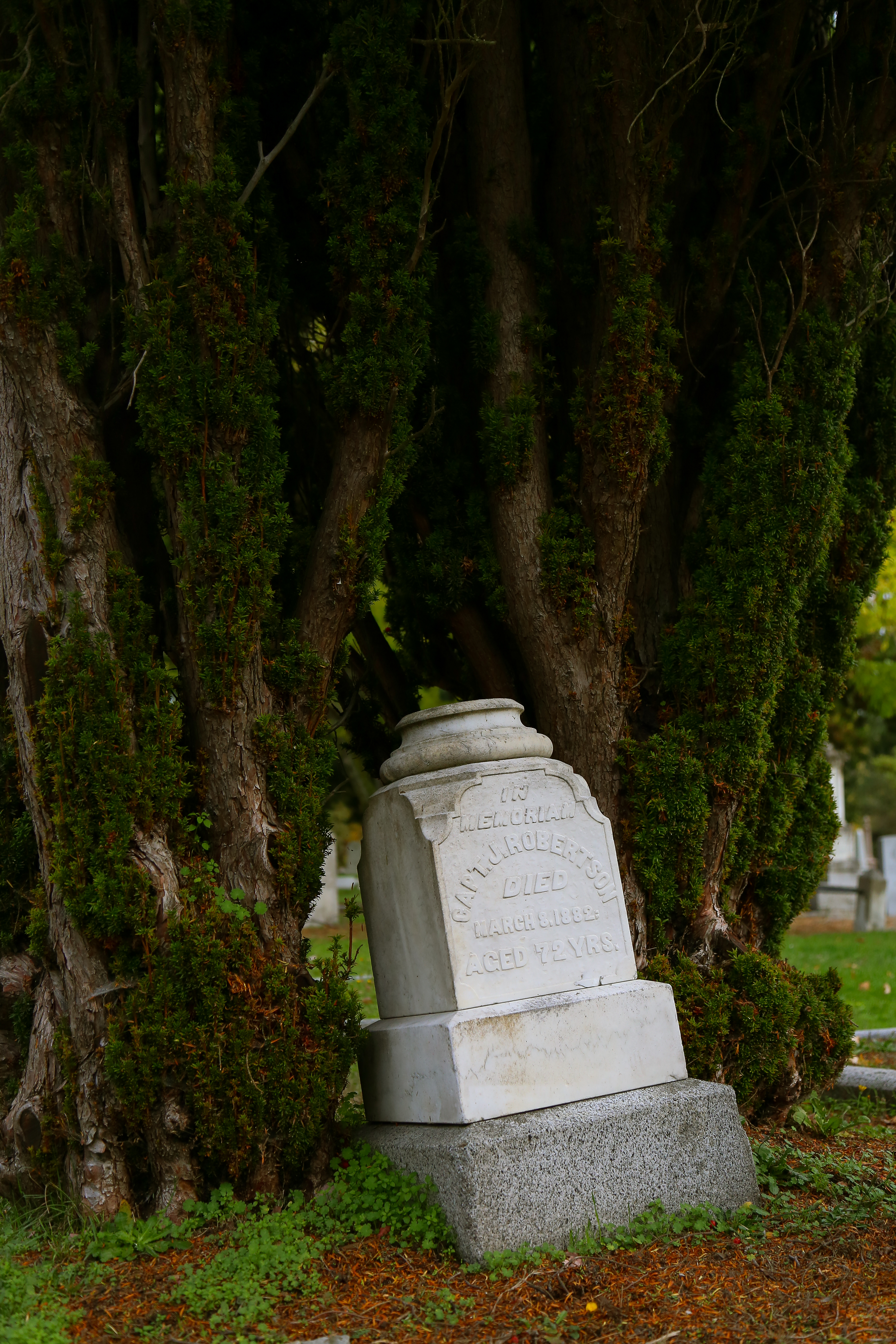 Ross Bay Cemetery in Victoria, British Columbia
