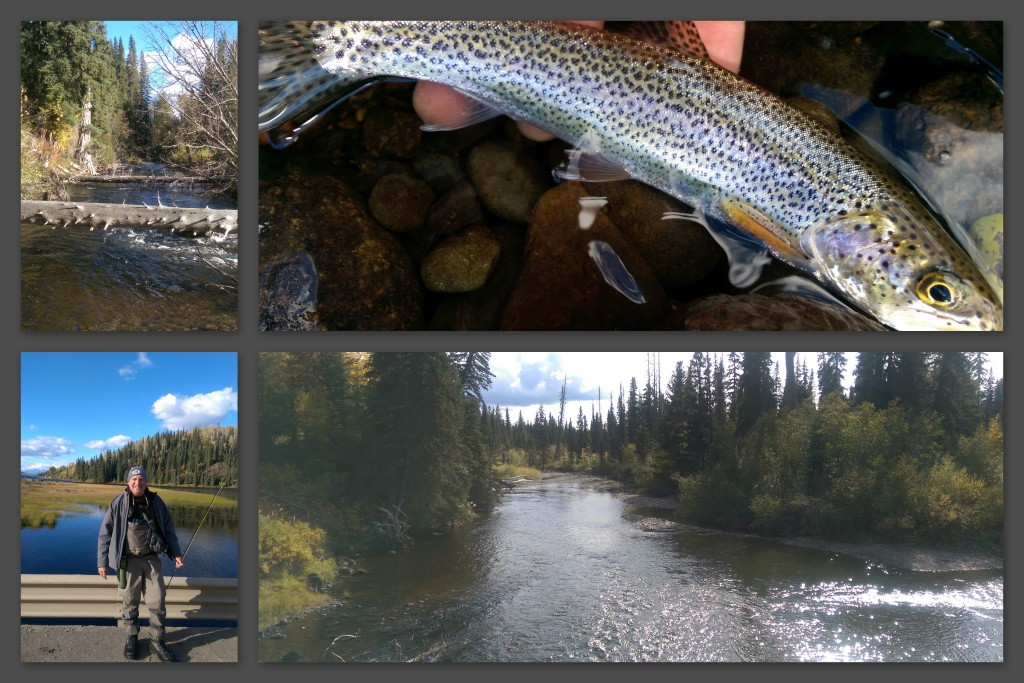 Highlights from the Babine River in Smithers. Photos by Keith Scott