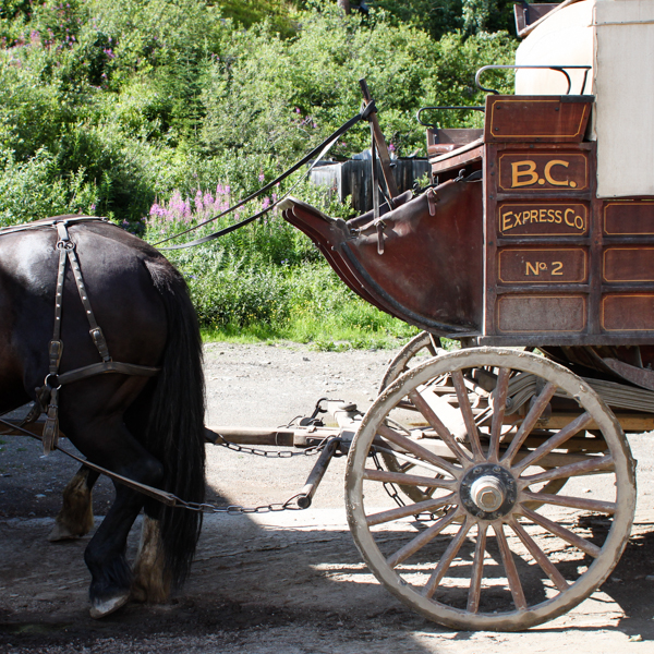 A stagecoach in Barkerville