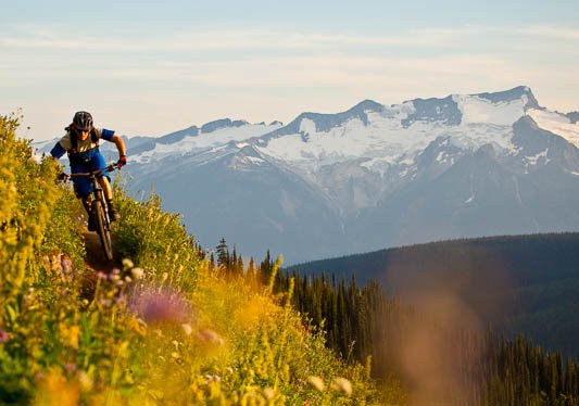 A man mountain bikes through a field of wildflowers with snow-covered mountains in the distance.