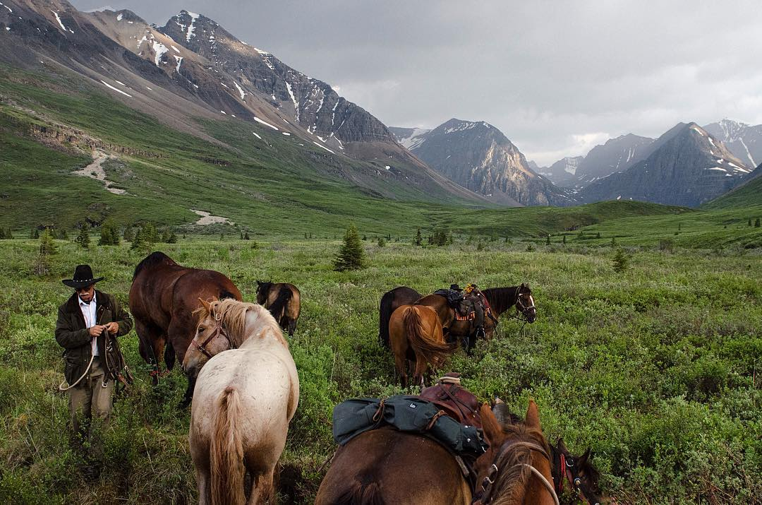 Riding horses in Northern BC's Rocky Mountains.