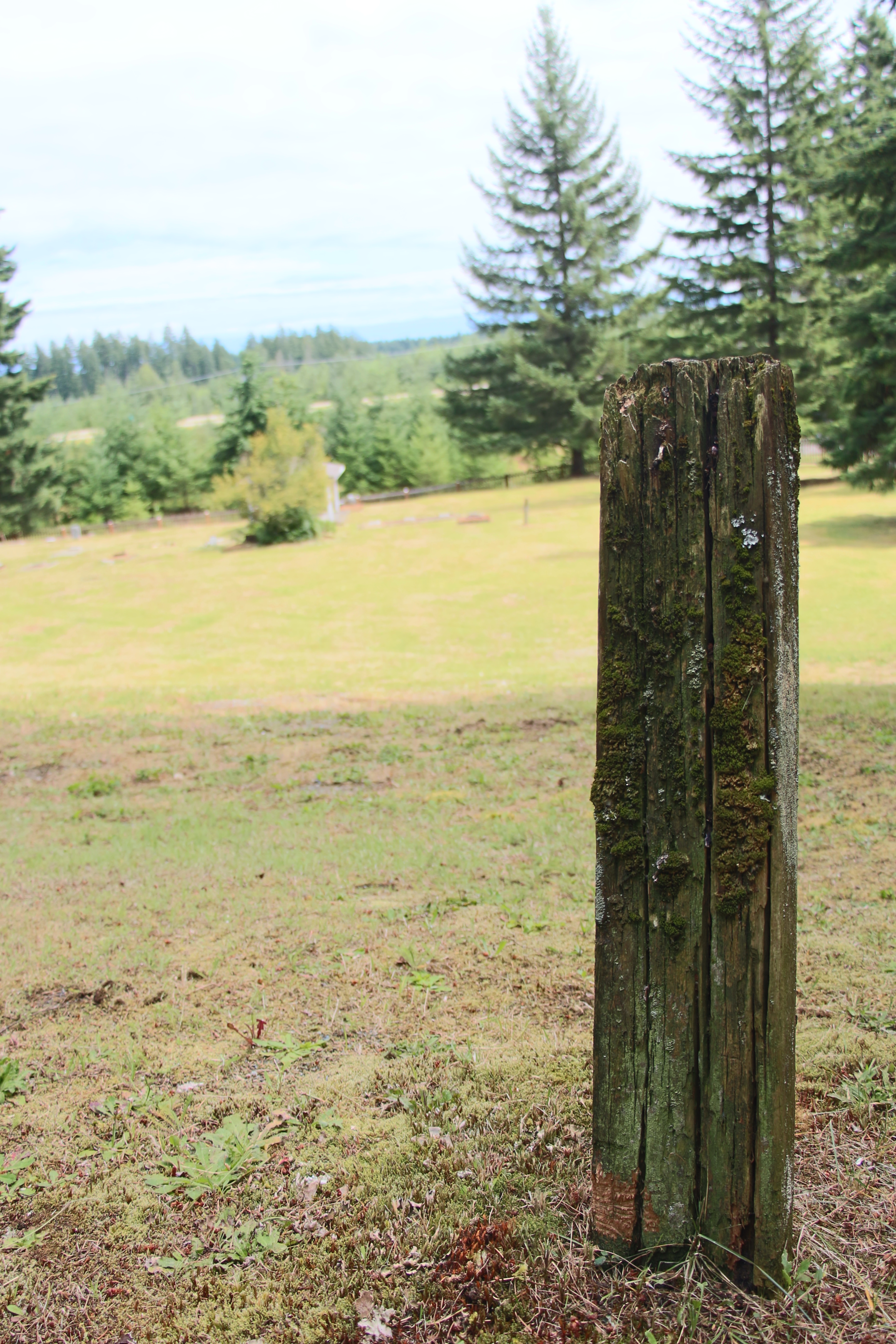 Cedar post marker at Chinese cemetery, Cumberland, Vancouver Island