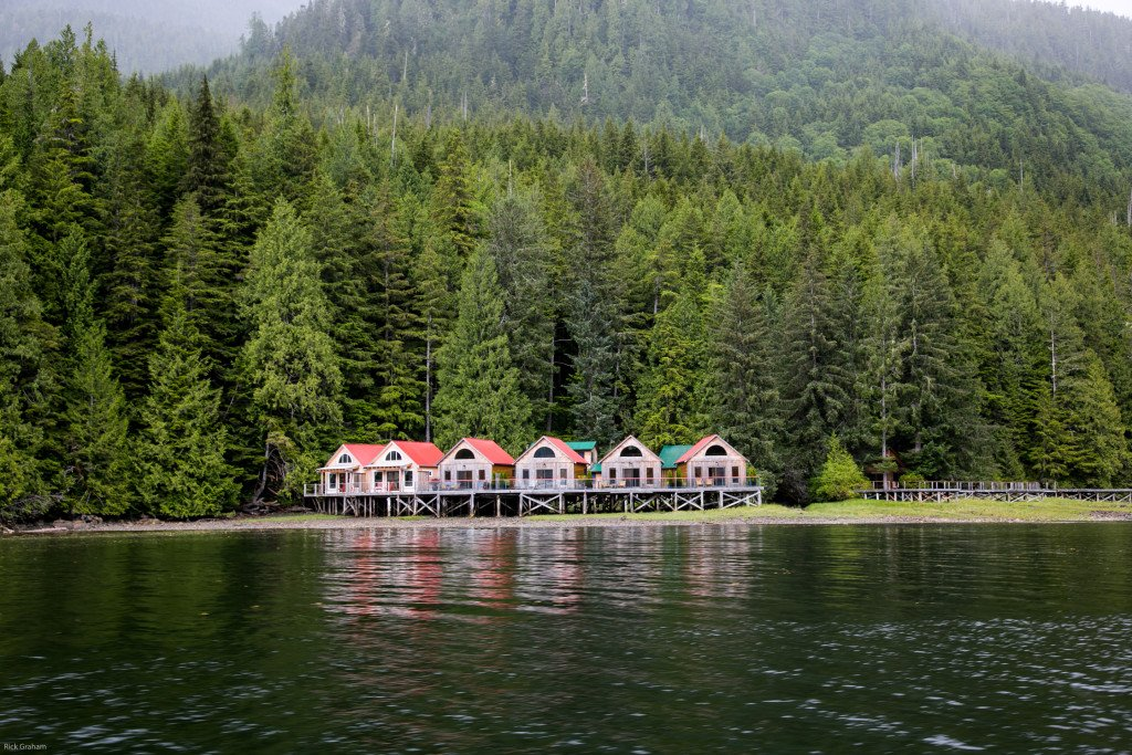 Beautiful cabins amidst the rainforest at Nimmo Bay Resort on northern Vancouver Island. Photo: Rick Graham/Destination BC