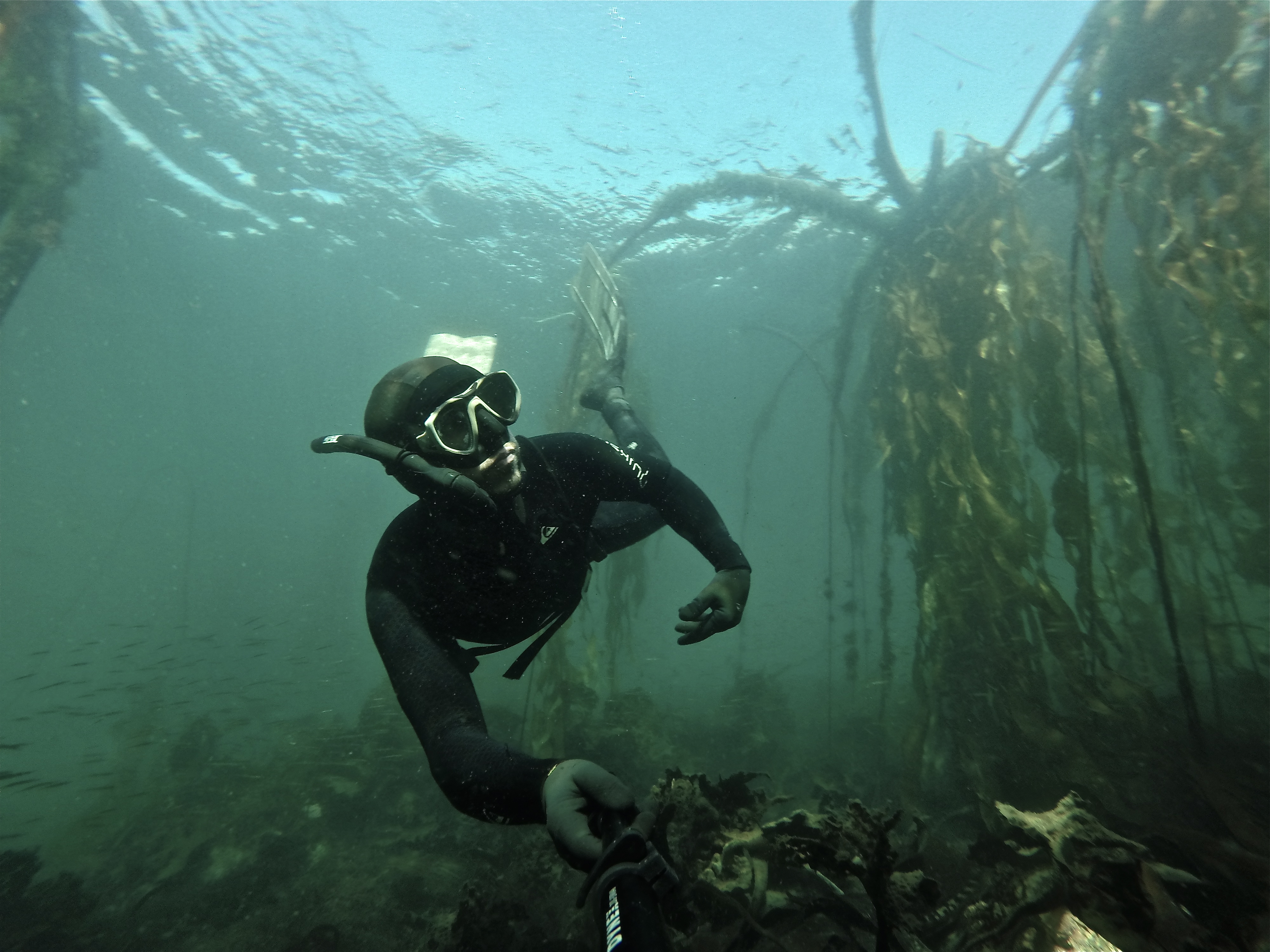 Scuba Diving at the Chinese Cemetery