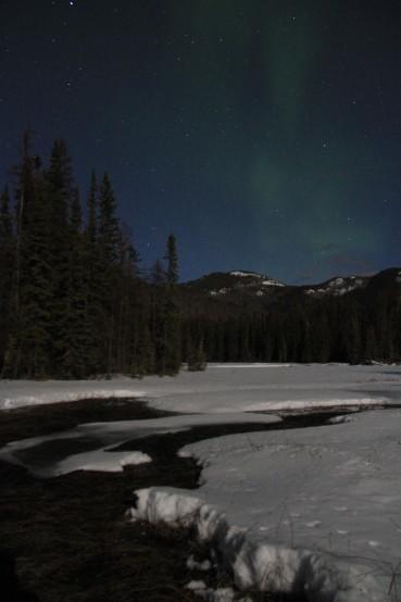 A winter landscape under the stars.