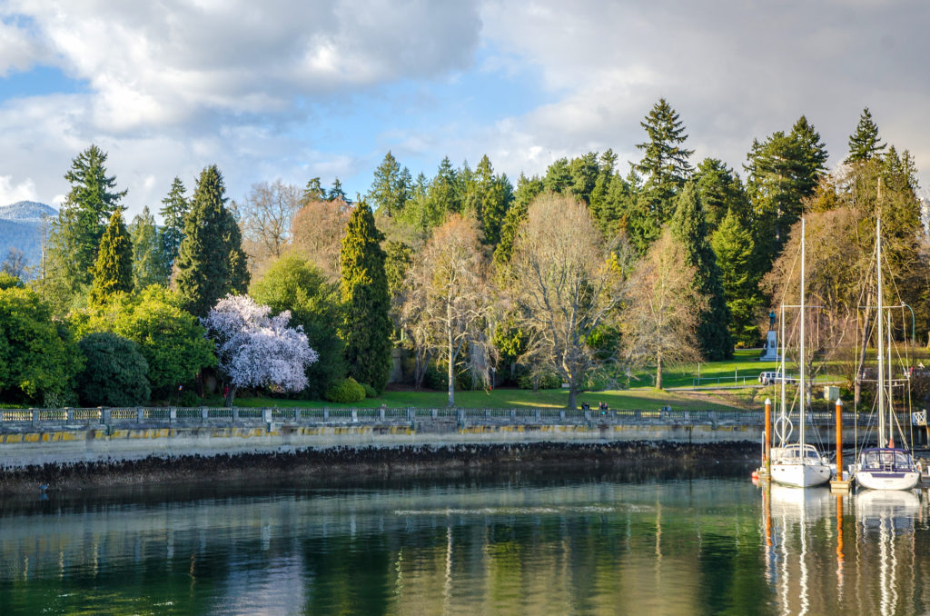 Stanley Park has more than 27 kilometres of forest trails.