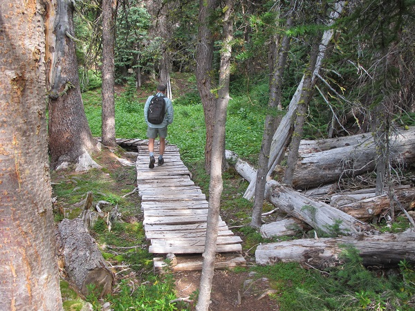 Well maintained trails with boardwalks and other features in Cathedral Mountain Park