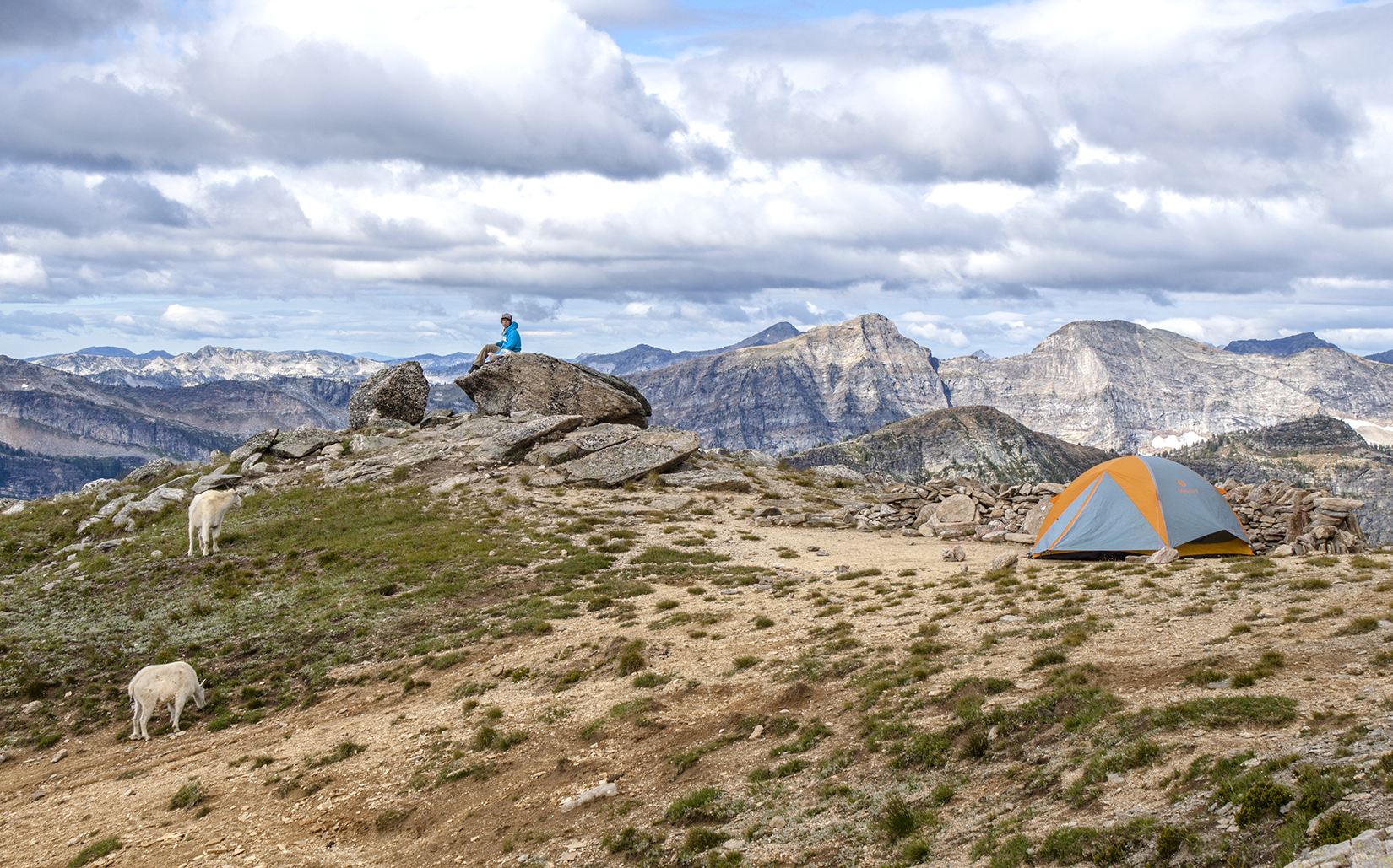 A tent is set up in a rocky area populated by two Valhalla goats.