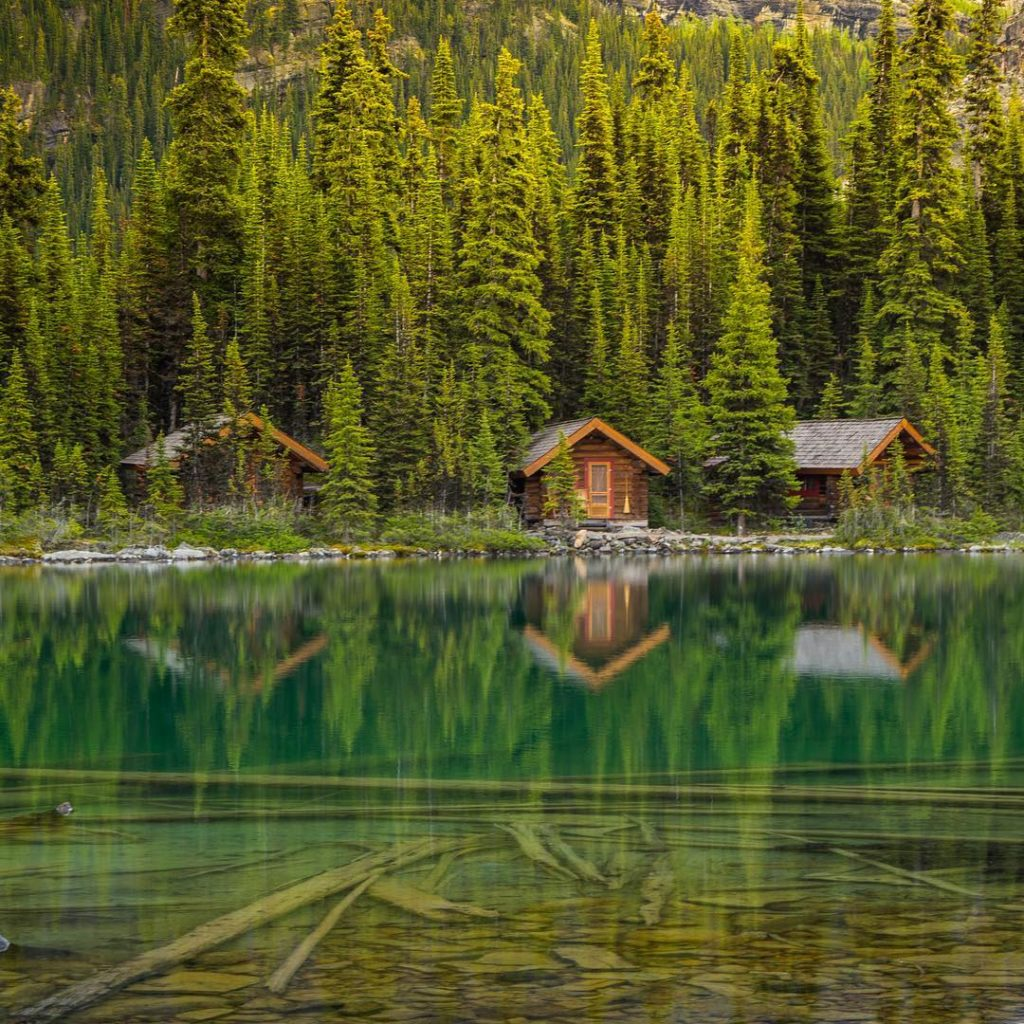 Traditional log cabins are nestled in a dense forest along placid waters.
