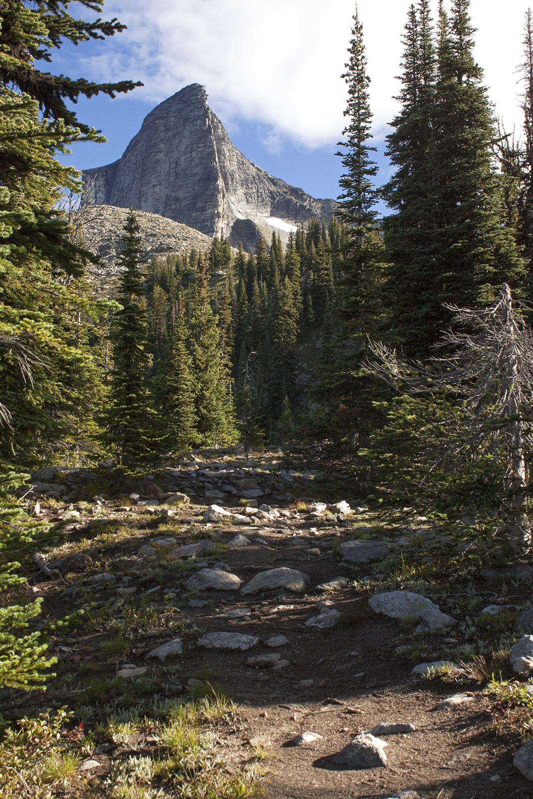 A rocky terrain leading to a large mountain.