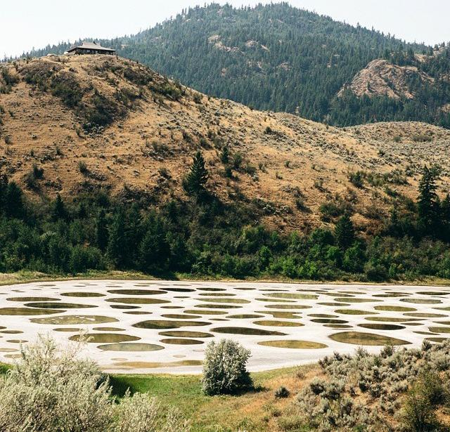 Spotted lake is nestled within a mountainous landscape.