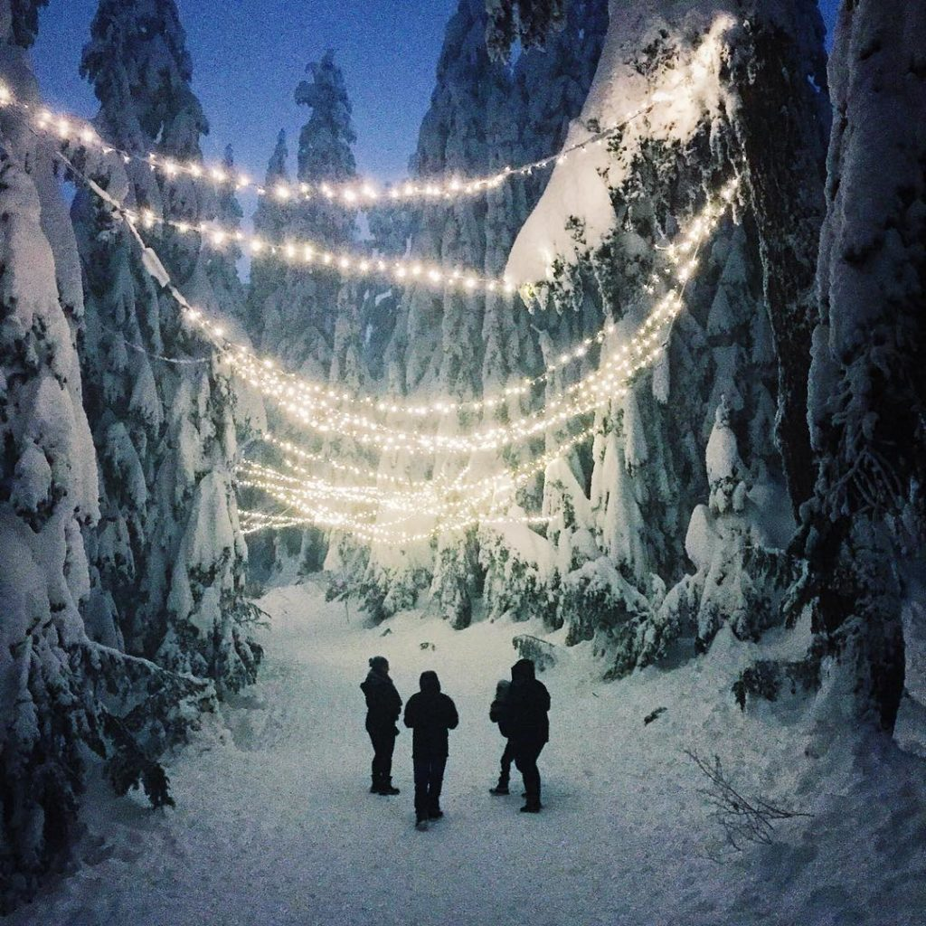 White fairy lights are strung across snow-dusted trees and glow bright in the evening.