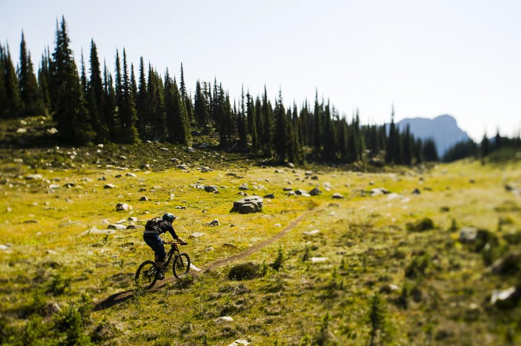A cyclist follows a winding path through a rocky landscape.