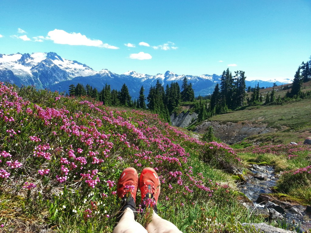 A pair of feet in red running shoes sit in a meadow of blooming wildflowers.