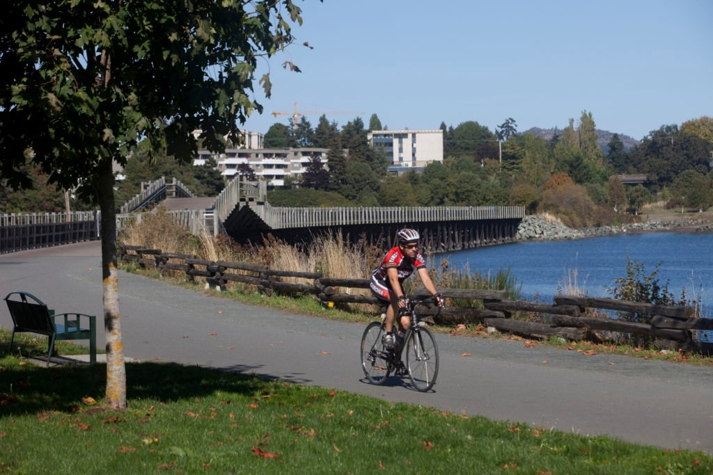 A biker pedals along a coastal road on a sunny day.