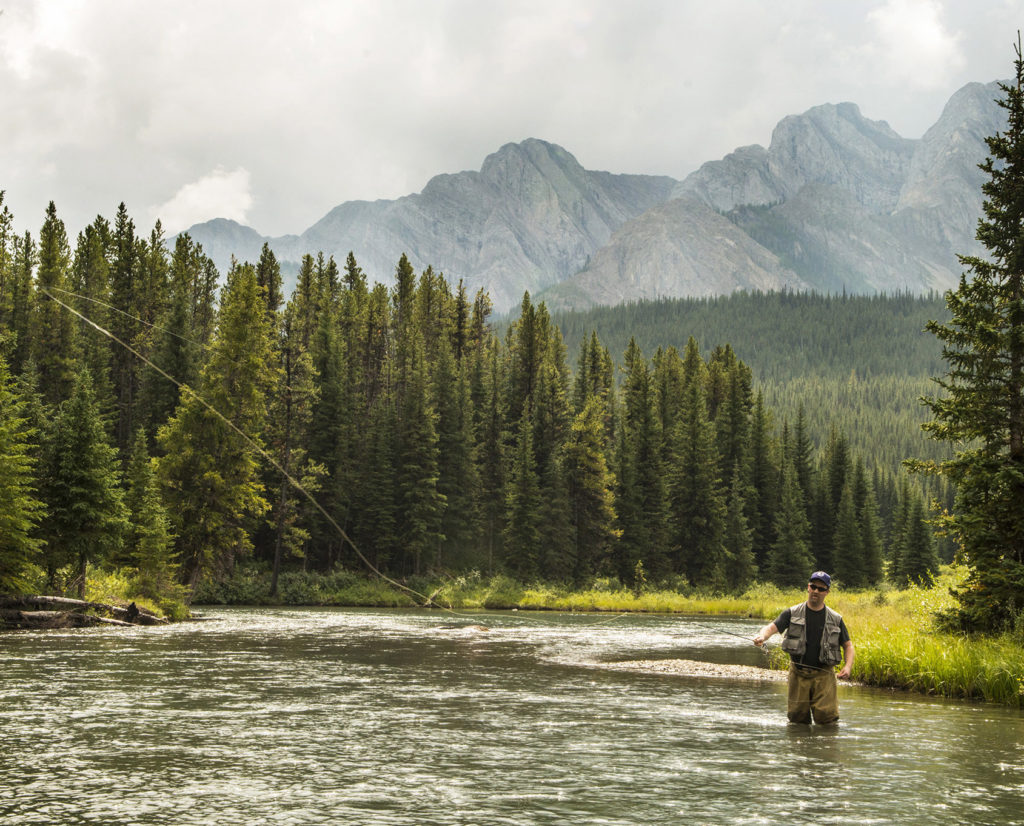 Fly fishing near Fernie, BC.