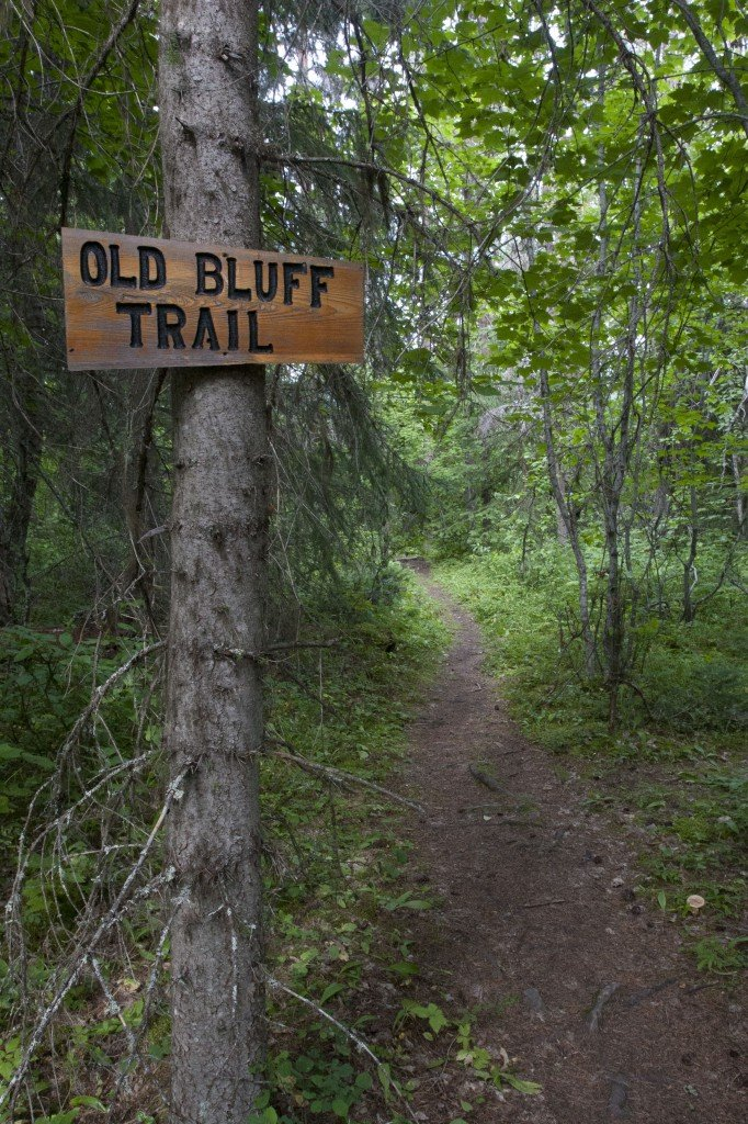 Mountain biking the Old Bluff Trail in Smithers, BC