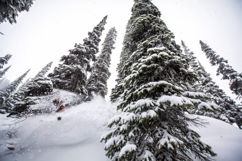 Tree skiing at Revelstoke Mountain Resort.
