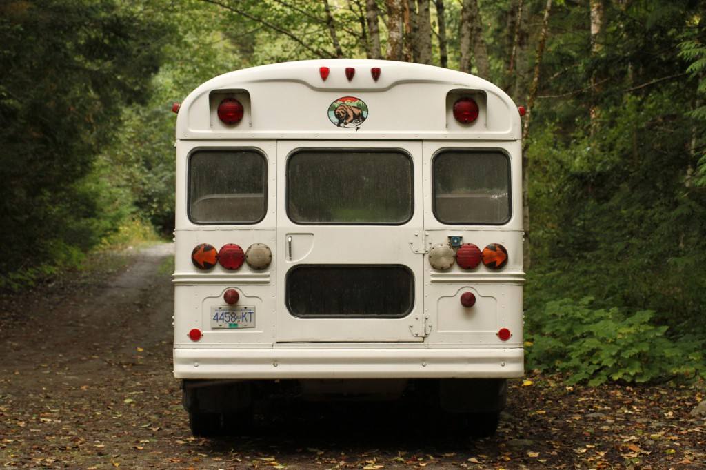 A white bus travels down a dirt road in the forest.
