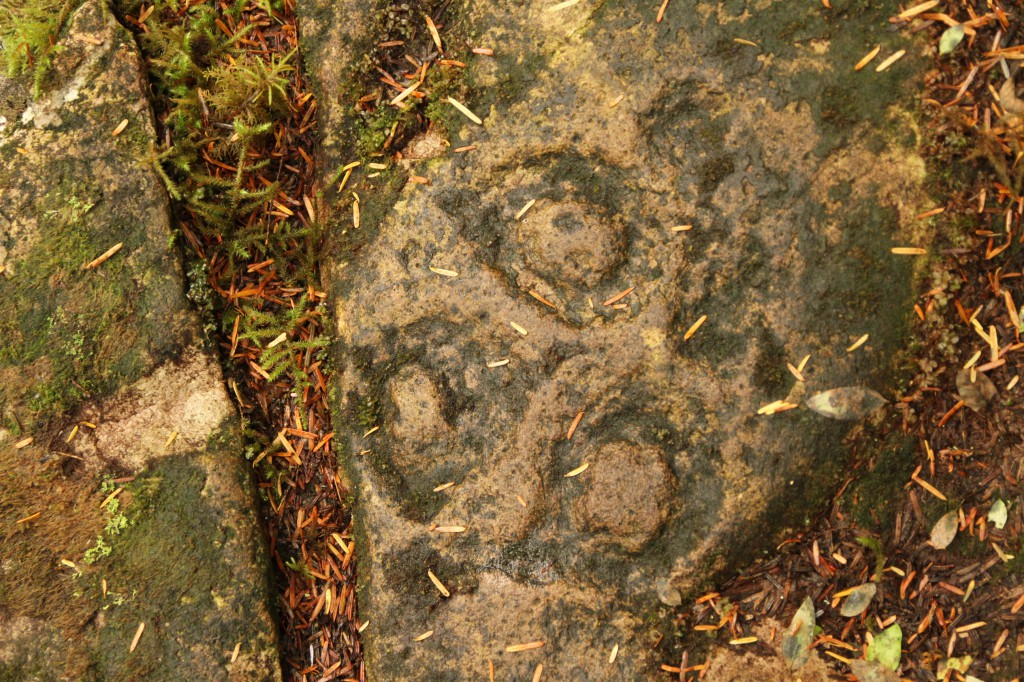 A stone on the forest floor with an intricate carving.