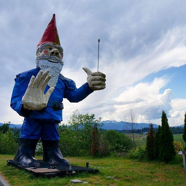 A statue depicting the world's largest garden gnome.