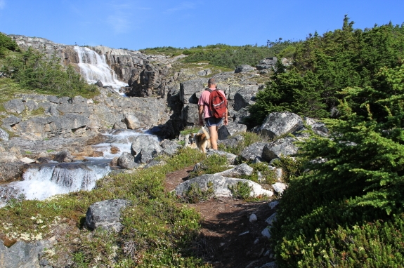 A hiker and his dog hike past a small waterfall in a rocky landscape.
