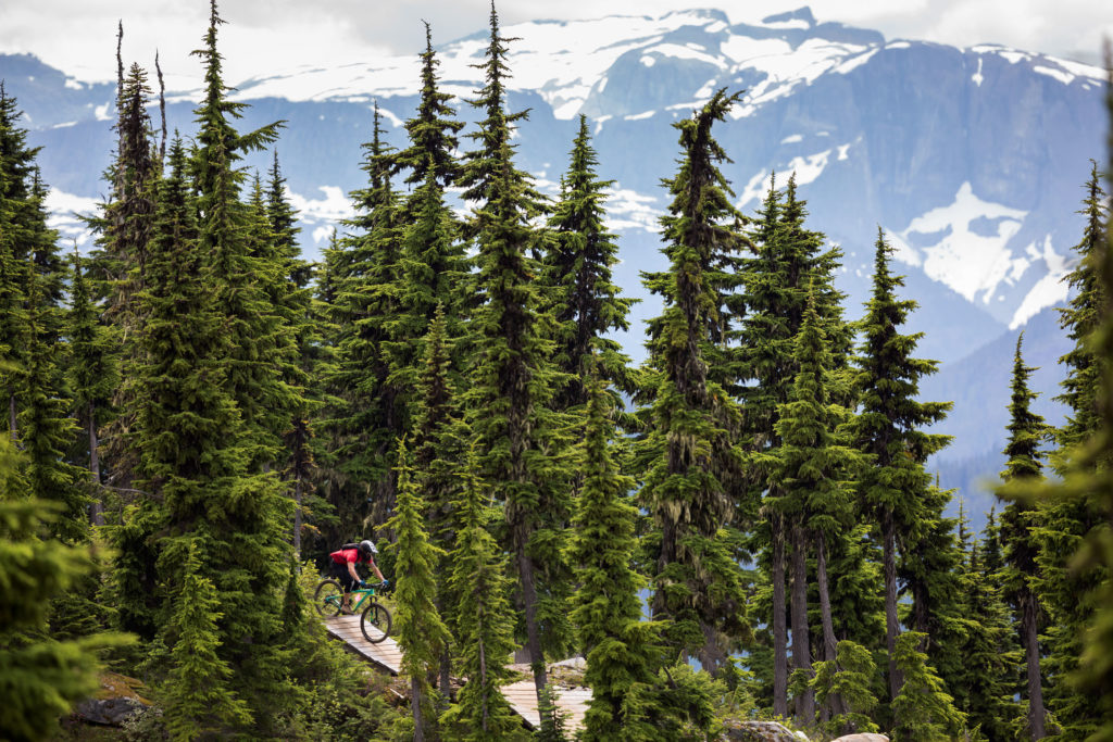 Mountain biker rides the Wizard trail at Mount Washington.