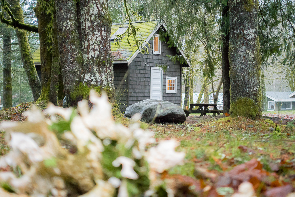 Sunwolf cabin in Squamish