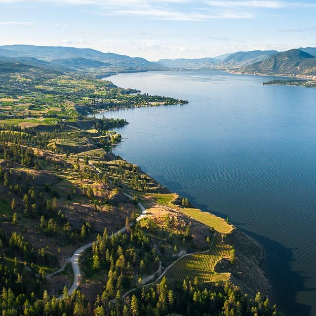 Aerial view of Okanagan Lake, with a lush green coastline.