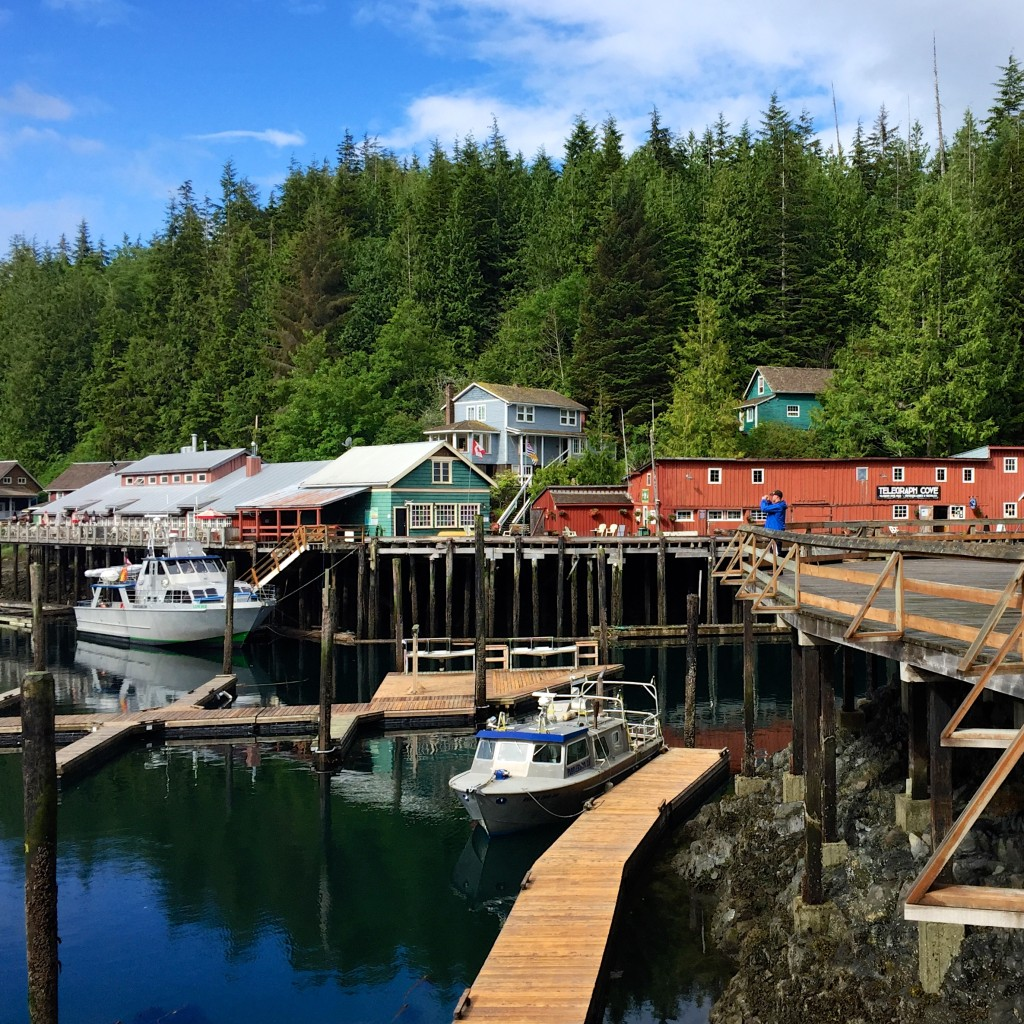 The bright colours of Telegraph Cove Resort, wooden docks, boats in the water and dense forest behind the resort.