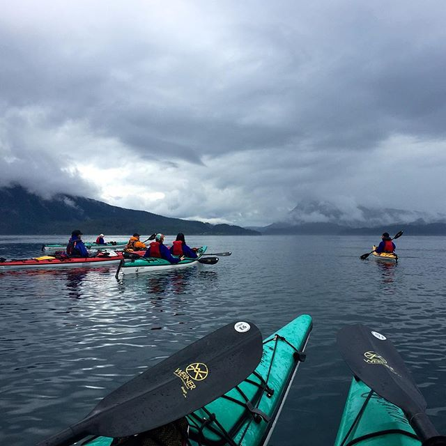 5 kayakers paddling in turquoise, yellow and red kayaks along the calm ocean in Port McNeil on Northern Vancouver Island with dark cloudy skies above.