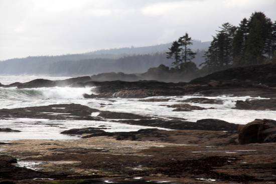 Waves crashing on the rocks at Sandcut Beach, casting mist into the sky with dark green trees in the background.