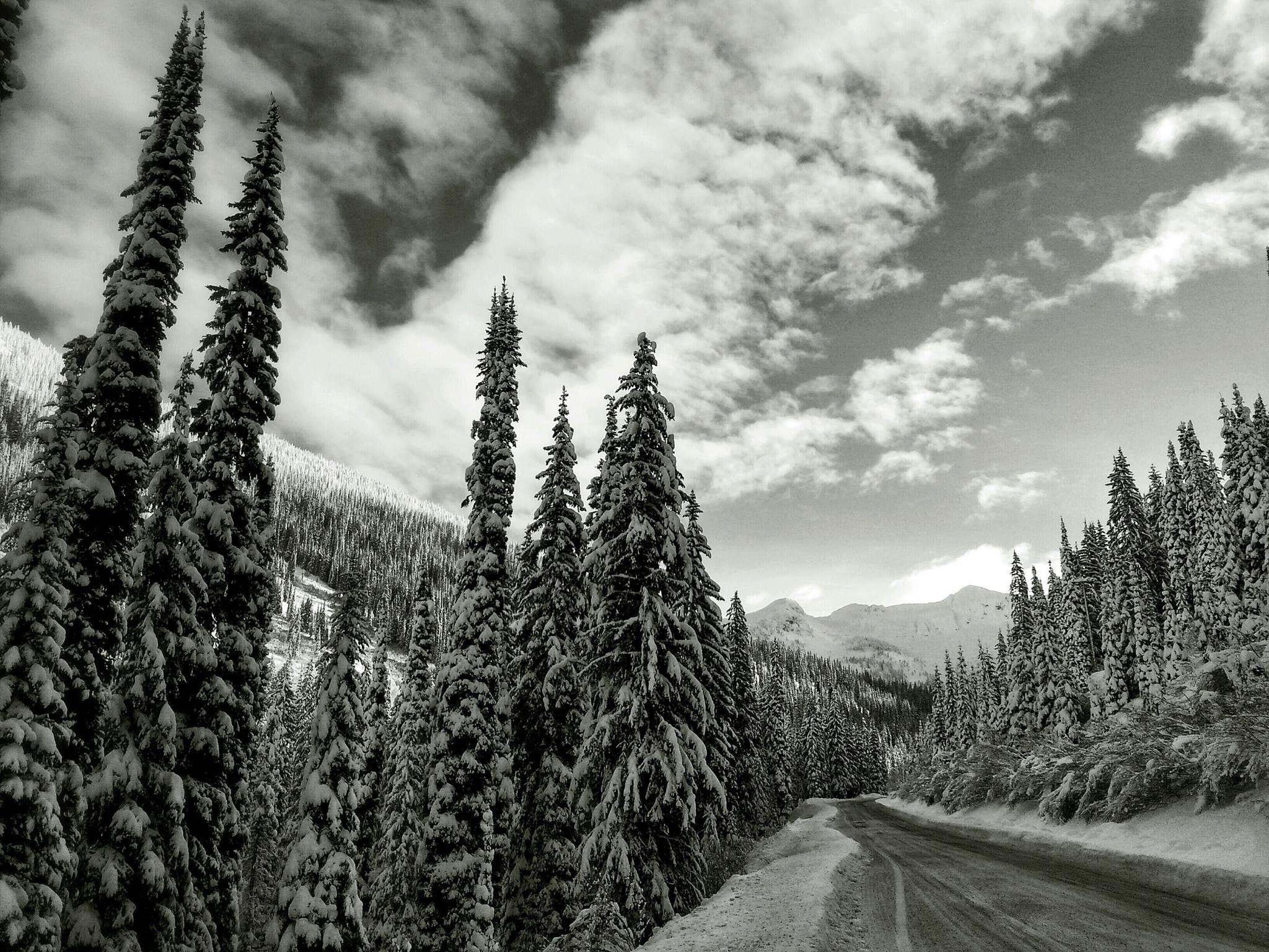 Powder Highway leads to Whitewater Ski Resort in Nelson. Photo: Gina Bégin