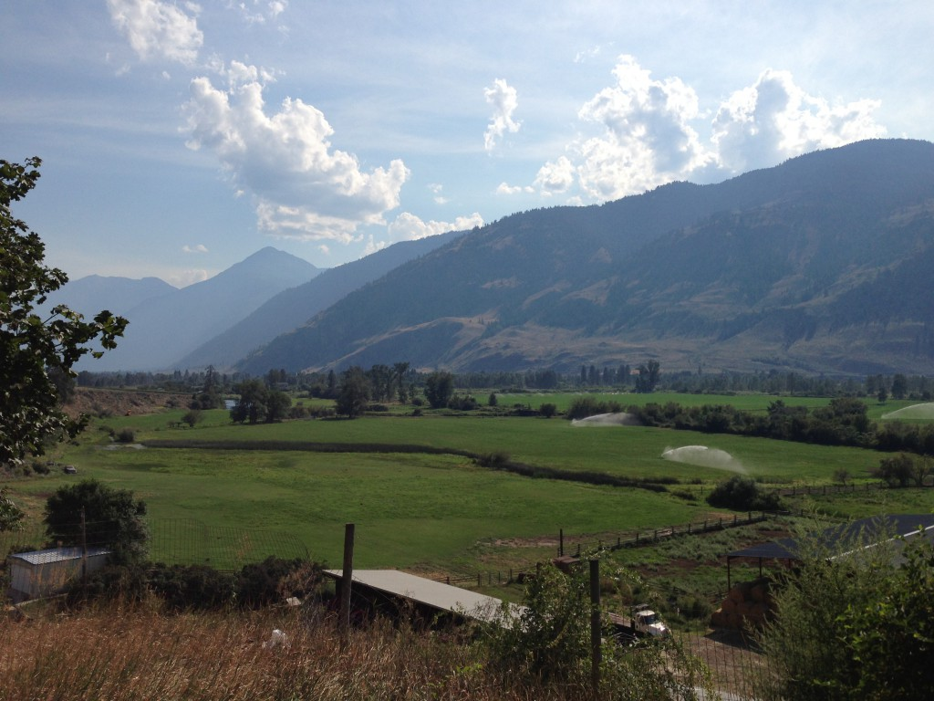 View from Forbidden Fruit Winery in Cawston, BC