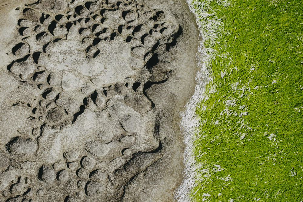 Coastal textures of Pender Island