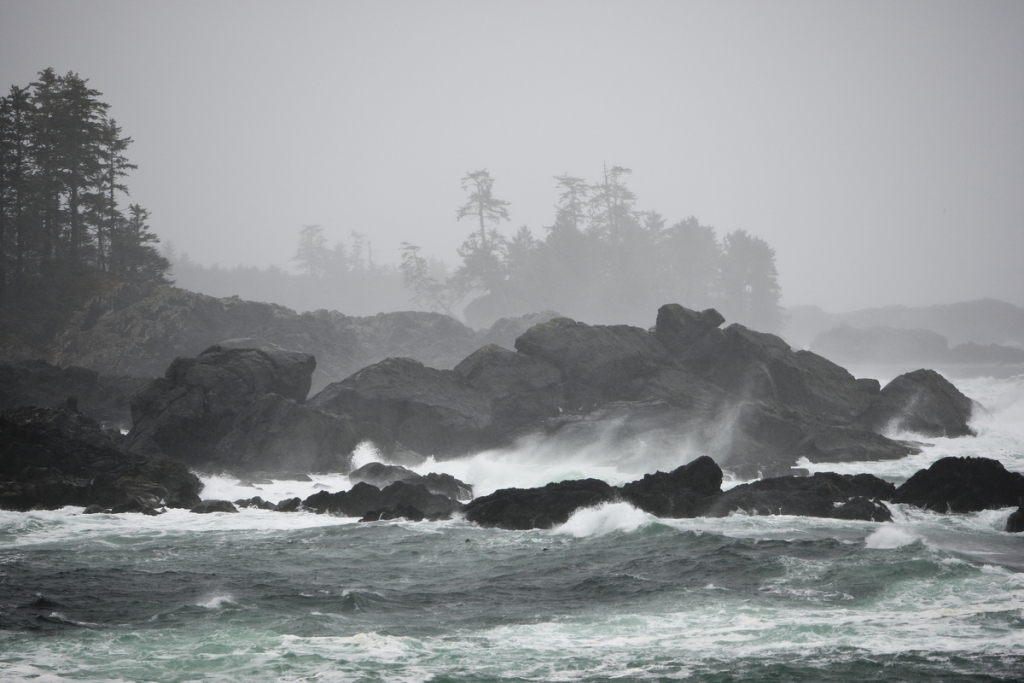 Storm watching near Amphitrite Lighthouse along the Wild Pacific Trail | Boomer Jerritt