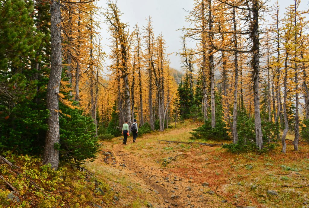 E.C. Manning Provincial Park is especially beautiful in the fall.