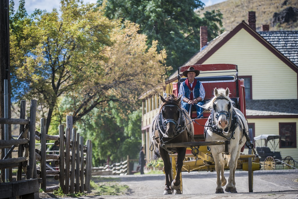 A man drives a horse-drawn carriage down a country road.