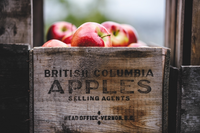 """A wooden box full of red apples with the words """"British Columbia Apples"""" on the side."""