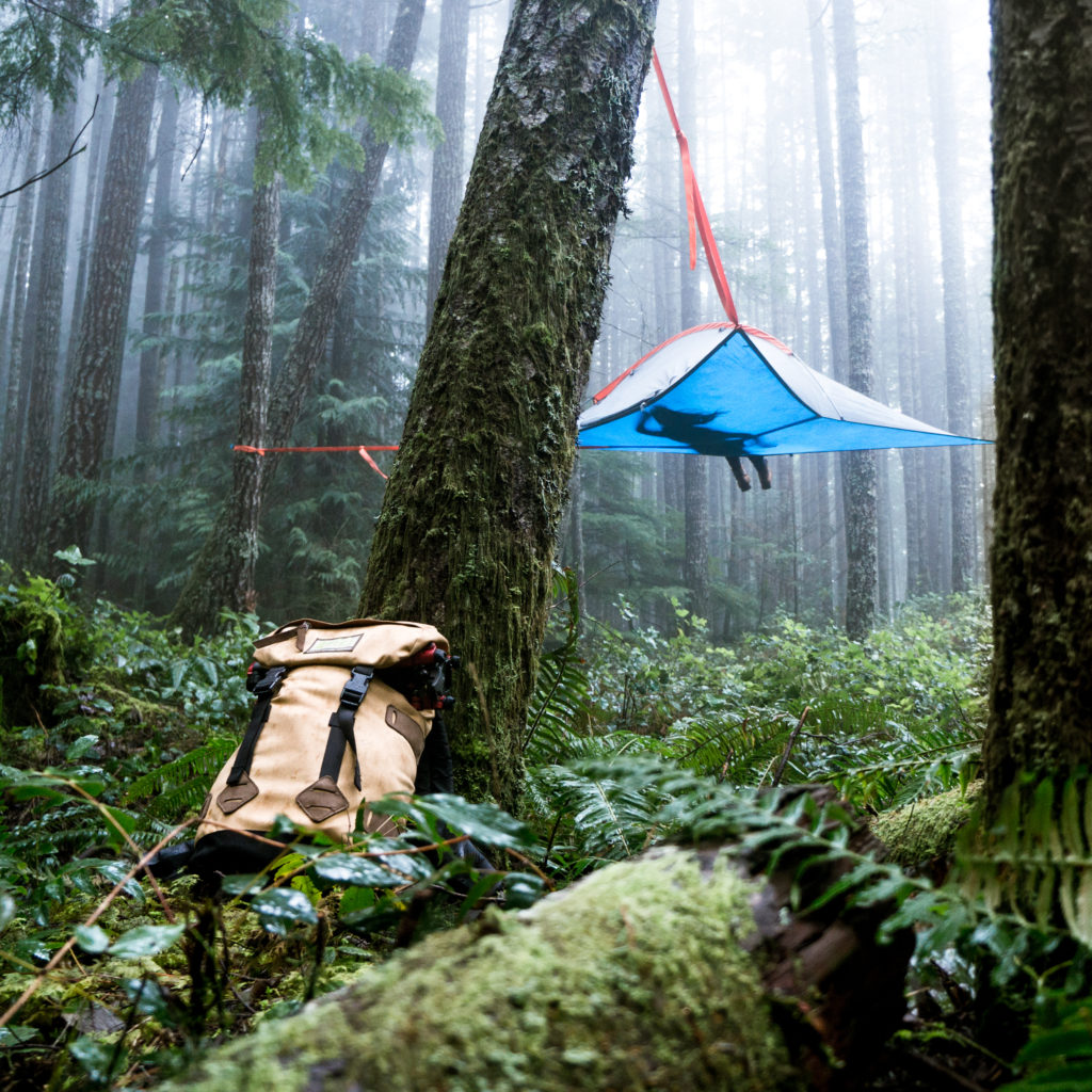 A camper relaxes in a tent suspended from a tree in the forest.