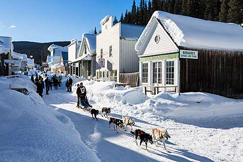 After delivering the mail, Mushers complete their journey through Barkerville's main street