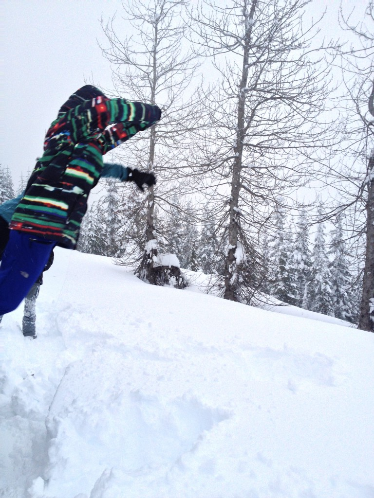 Snowmobiling with Extremely Canadian in Whistler, BC. Photo: Laura McDonald