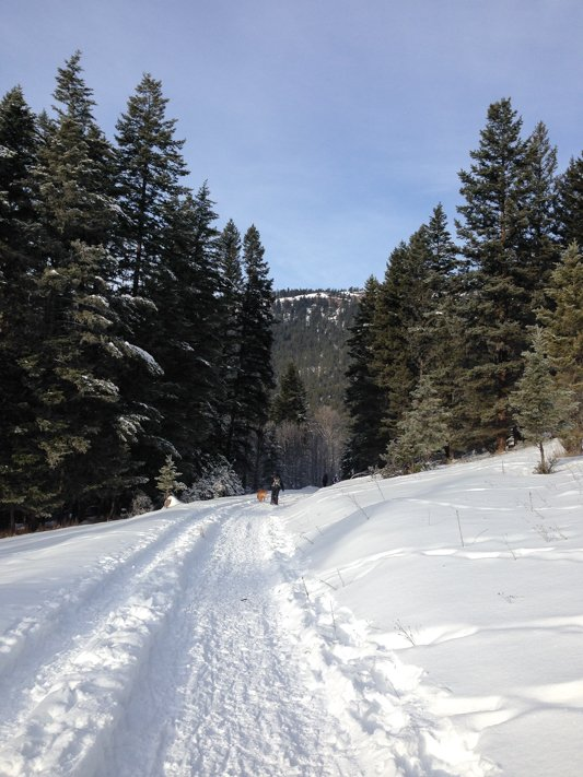Snowshoeing at Lac du Bois Grasslands near Kamloops, BC
